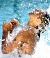Аквааеробіка - 5 вправ для тренування