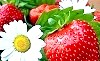Авітаміноз - коли не вистачає вітамінів