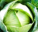 Білокачанна капуста: властивості і користь, капустяні дієти