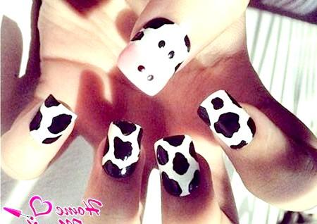 Фото - малюнок корови на дитячих нігтях