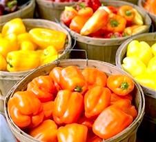 Болгарський (солодкий) перець: властивості, протипоказання. склад і застосування перцю