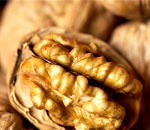 Волоський горіх: склад, користь і властивості, лікування волоським горіхом