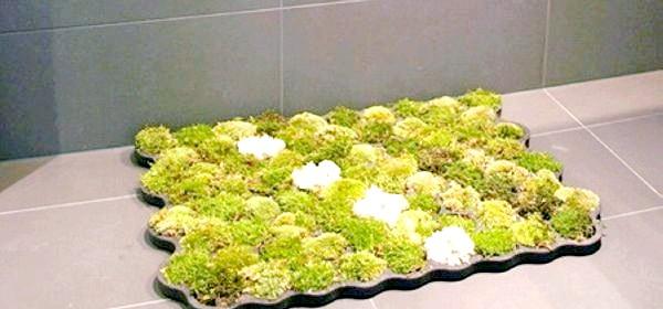 Фото - Килимок зі штучного моху