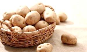 Історія появи картоплі на руси