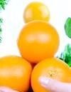 Яєчно-апельсинова дієта - низкоуглеводная напрямок