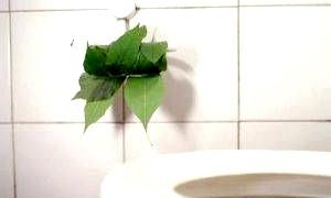 Як очистити кишечник народними засобами?