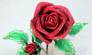 Як плести з бісеру квіти: лілії і троянди