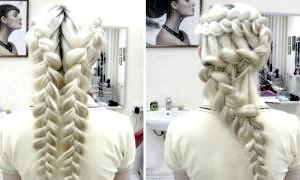 Як плести колосок, схема для початківців - перший крок до складних зачісок з кіс