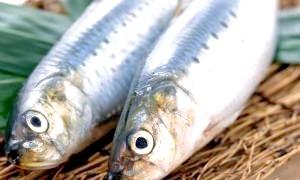 Як правильно вибирати рибу?