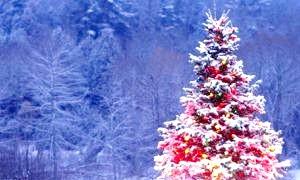 Як прикрасити новорічну ялинку