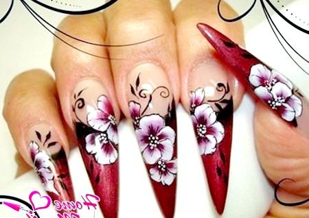 Фото - розпис нігтів форми стилет
