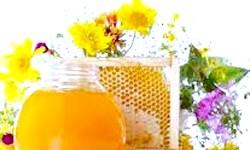 Фото - Рецепт приготування меду і трав для лікування