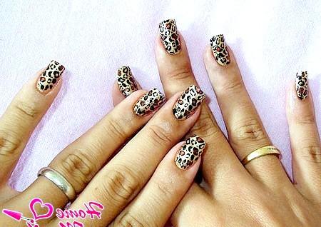 Фото - модний леопардовий принт