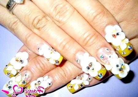 Фото - об'ємна композиція на нарощених нігтях