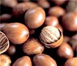 Масло дерева ши і його властивості