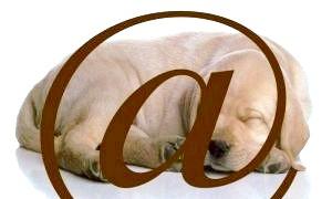 Чому ми називаємо символ @ собакою?