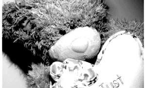 Чому так популярні ведмедики Тедді?
