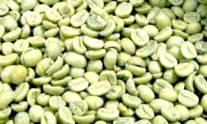 Фото - Користь і шкода зеленого кави: засіб для стрункості або небезпечний напій?