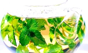 Фото - Користь зеленого чаю