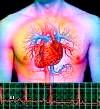 Причини тахікардії: перебої в роботі серця