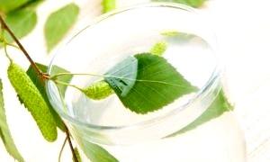 Самогон з березового соку: технологія виробництва