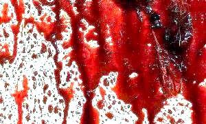 Скільки крові в людині?