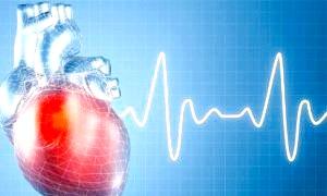 Скільки ударів на хвилину має битися серце?