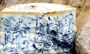 Сир з блакитною пліснявою: задоволення для гурманів