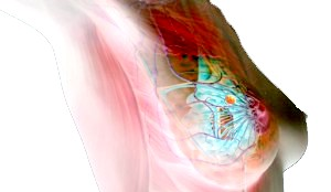 Варіанти лікування мастопатії