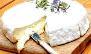 Види м'яких сирів - класифікація за французькою методикою, особливості приготування і способи подачі