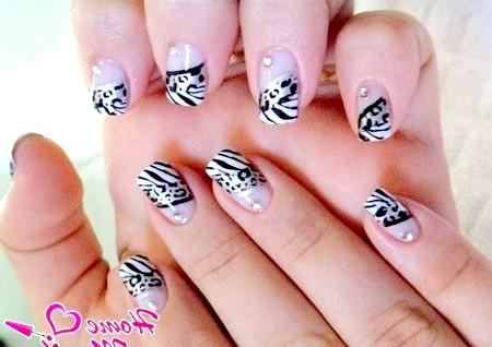 Фото - дизайн нарощених нігтів з твариною принтом