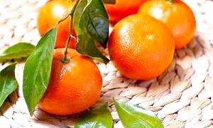 Фото - Всі про новорічні фруктах, або Користь і шкода мандаринів