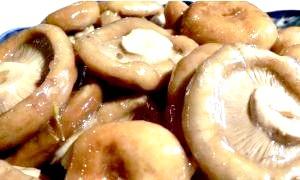 Засолка грибів - і взимку літо
