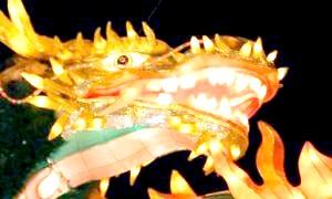 Тварина-покровитель 1988 року - жовтий дракон