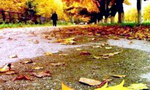 Золота осінь: золоті правила боротьби з нудьгою