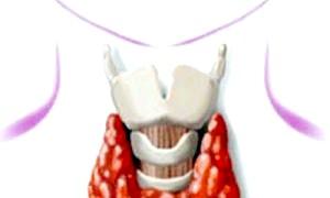 Що таке гіперфункція щитовидної залози?