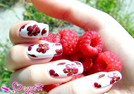 Фото - червоні квітки на білому фоні
