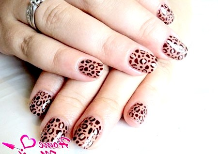 Фото - леопардовий шілак за допомогою стемпінга