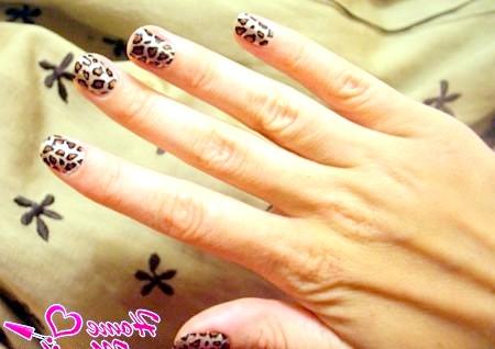 Фото - леопардовий нейл-арт з наклейками Мінкс