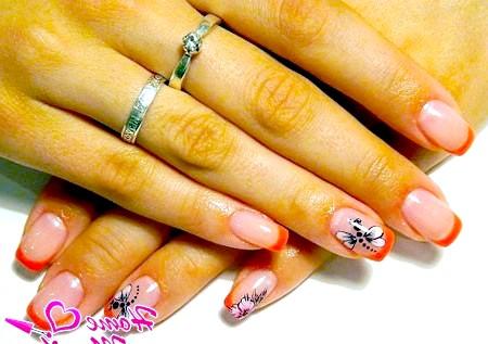 Фото - яскравий дизайн нігтів френч з малюнком бабки