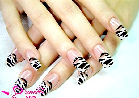 Фото - нігті френч з малюнком зебри