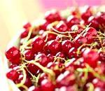 Червона смородина: властивості і користь, листя і сік червоної смородини