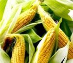 Фото - кукурудзяна дієта