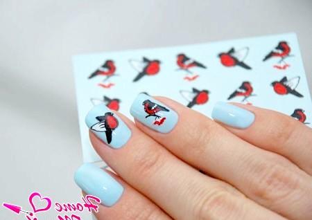 Фото - слайдер дизайн для нігтів зі снегирями
