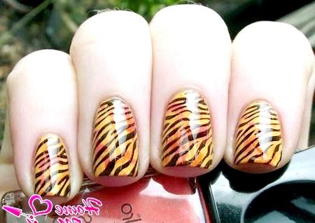 Фото - тигровий манікюр за допомогою стемпінга
