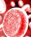 Фото - чим небезпечний високий гемоглобін
