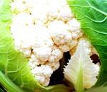 Фото - Цвітна капуста
