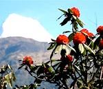 Фото - клімат Непалу