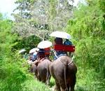 Фото - Відпочинок в Таїланді