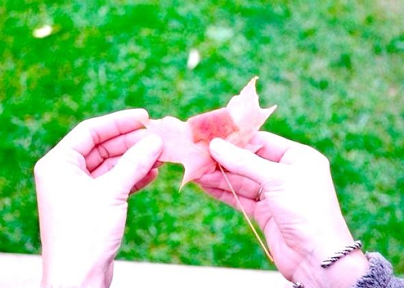 Фото - Як зробити троянду з осіннього листя майстер-клас 2
